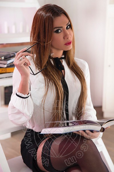 Pilar Trans  NOVENTA DI PIAVE 3509020703